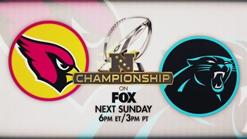 NFC Championship preview: Panthers vs. Cardinals